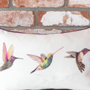 Humming bird cushion
