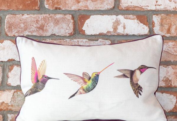 Humming bird cushion